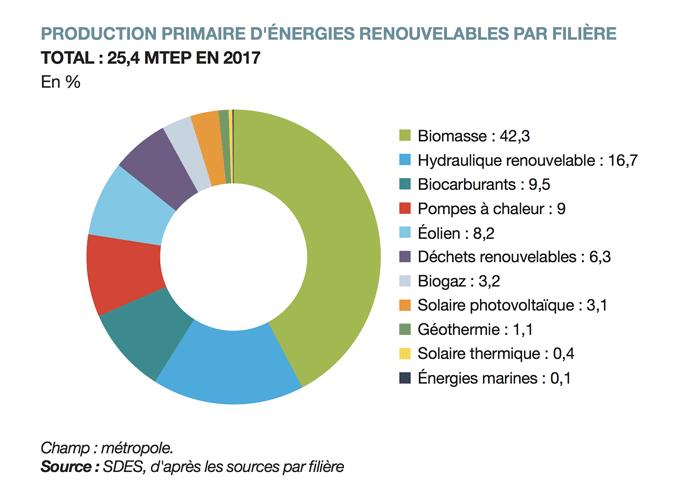 Production primaire d'énergie renouvelable par filiere